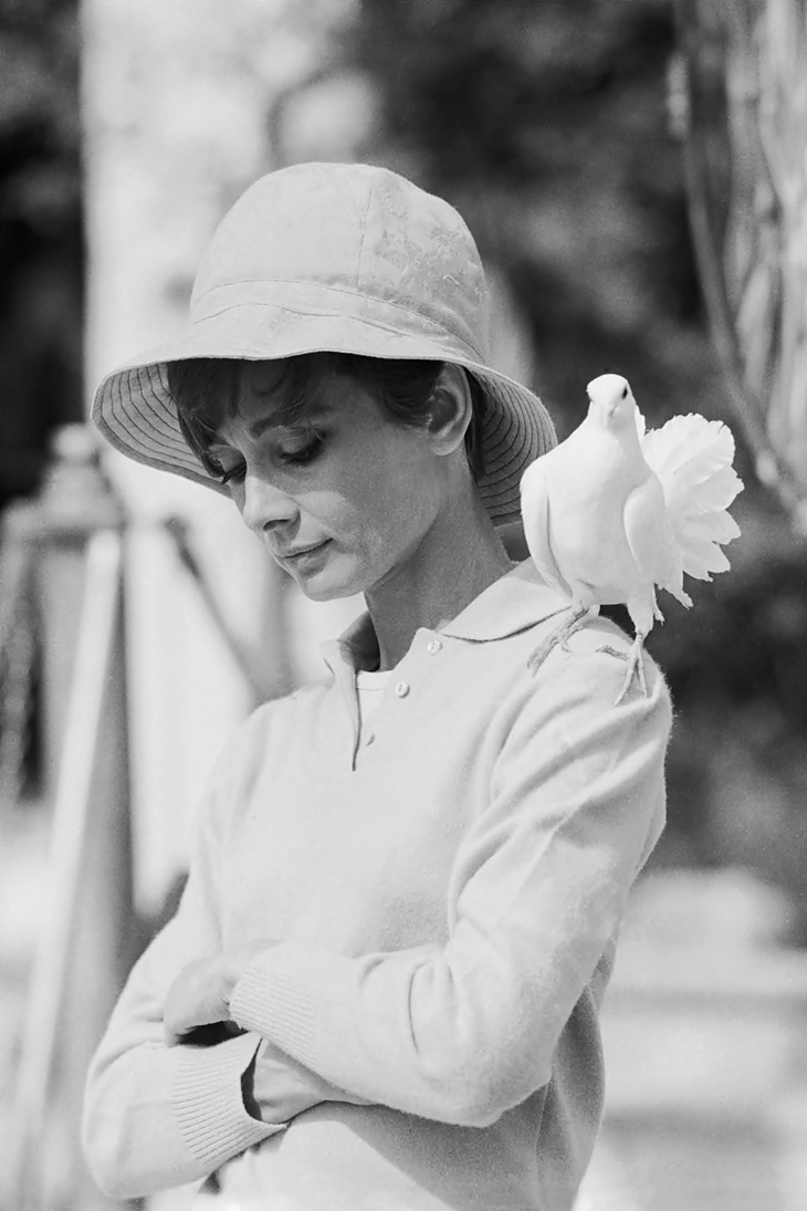 Audrey Hepburn by Terry O'Neill